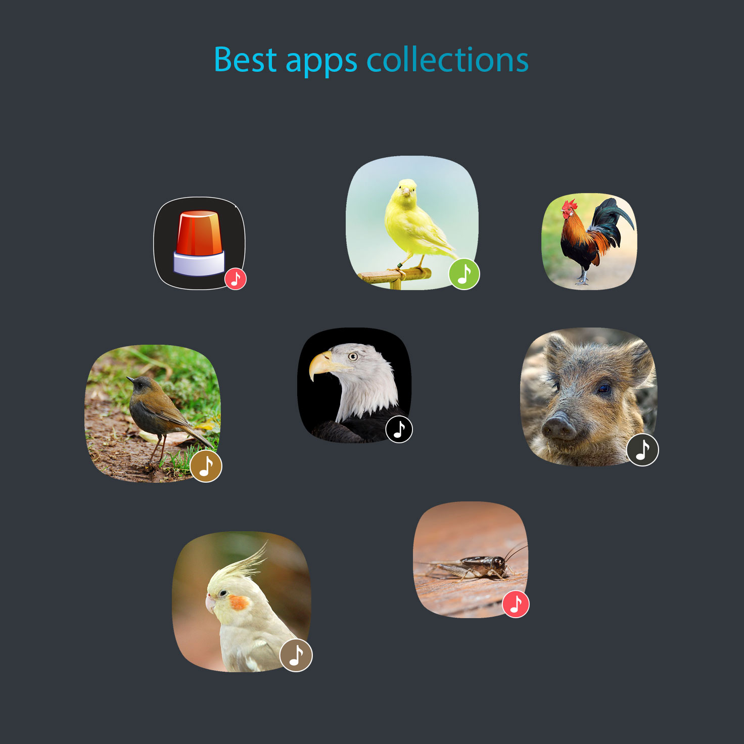 Best apps collections